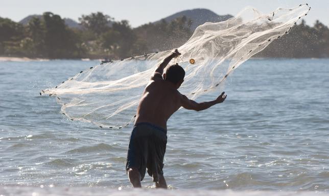 Foto de Oliver Bencosme (UPR Sea Grant)