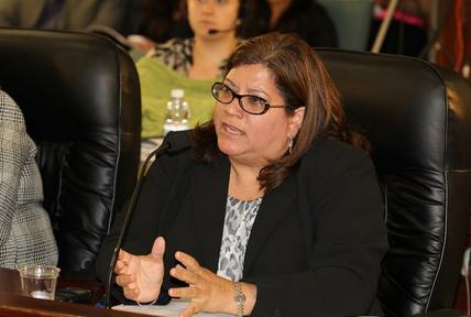 Carmen I. Salgado, administradora de las Procuradurías