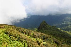 Cinco órdenes ejecutivas para proteger el ambiente y promover el desarrollo sostenible del país