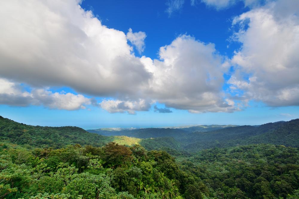 Más de $8.5 millones para proyectos de desarrollo económico y servicios comunitarios en Puerto Rico