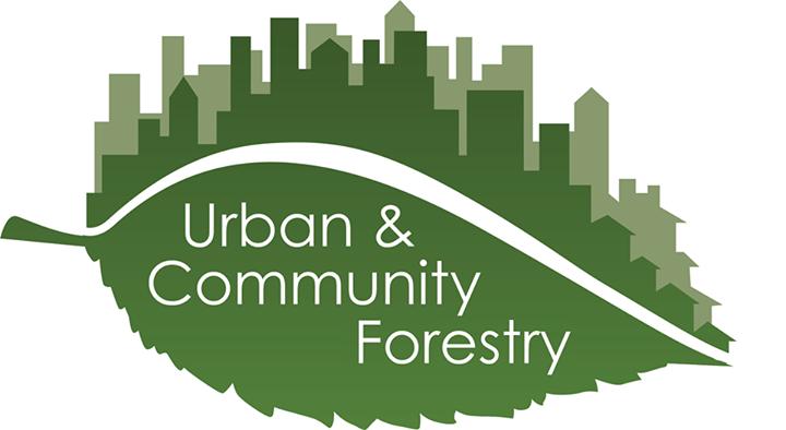 Anuncian disponibilidad de fondos para crear empleos verdes