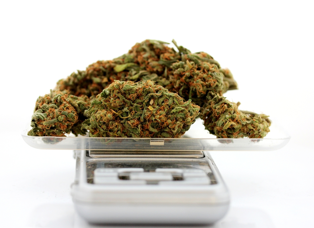 Descarga todas las ponencias de las vistas senatoriales sobre despenalización de marihuana