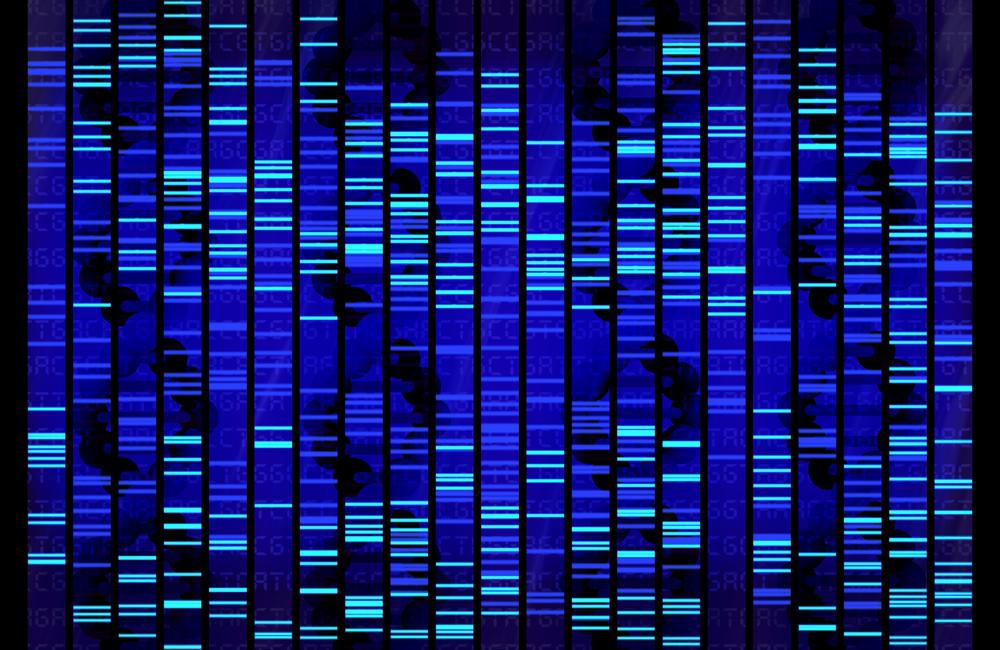Prohibido el discrimen por información genética por parte de patronos y planes médicos