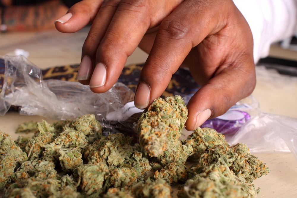 Conversan sobre despenalización de marihuana en la Escuela de Derecho UPR