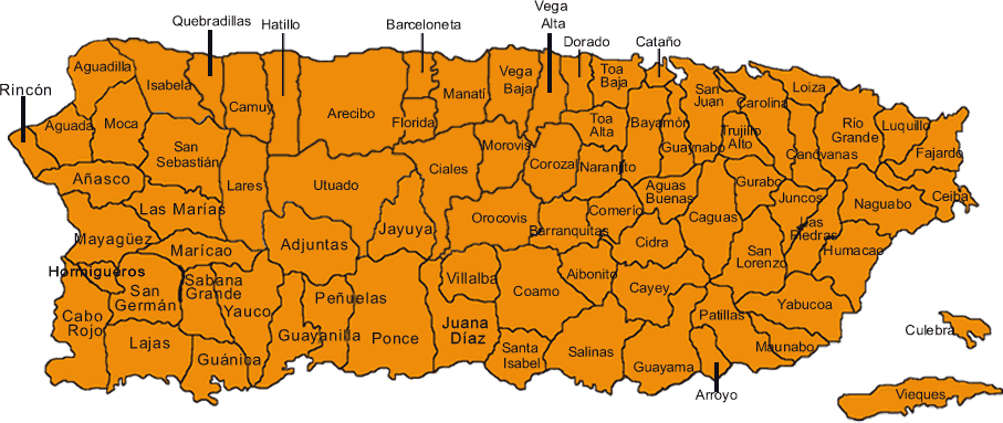 Descarga la Ley de Municipios Autónomos, Ley Número 81 de 30 de agosto de 1991, actualizada a enero de 2015