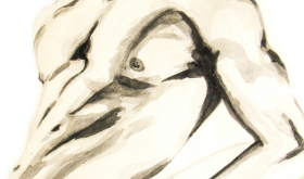 El desnudo artístico será el tema de la competencia de debate Miguel Velázquez Rivera
