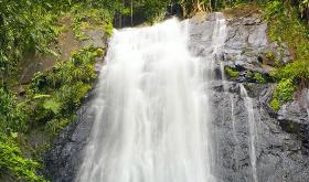 Demanda por accidente en El Yunque desestimada por excepción a ley federal de reclamaciones por daños