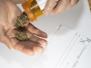 Visto bueno a uso medicinal de la marihuana en Puerto Rico