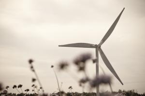 Pendiente la aprobación de proyecto sobre servidumbres de líneas de transmisión de proyectos de energía renovables