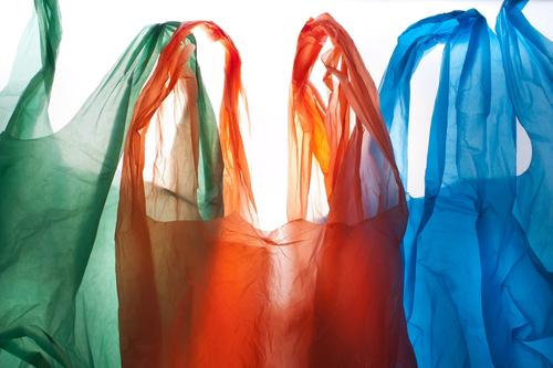 Un año para eliminar las bolsas plásticas en comercios