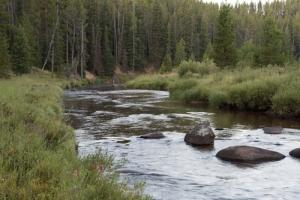 Supremo le ordena a estado de Wyoming pagar daños a Montana por reducción de volumen de agua proveniente del río Tongue