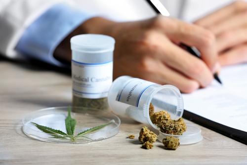 Cursos como requisito para certificaciones y licencias en industria de cannabis medicinal en Puerto Rico