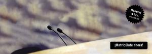 Fundamentos del litigio: dominando las técnicas y reglas del interrogatorio directo y la presentación de evidencia en juicio