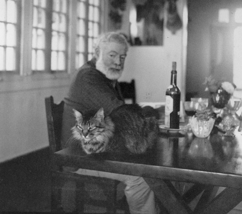 Ernest Hemingway Photographs Collectino. John F. Kennedy Presidential Library and Museum, Boston