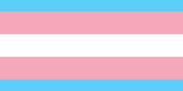 Nuevas iniciativas que promueven trato igualitario a población trans