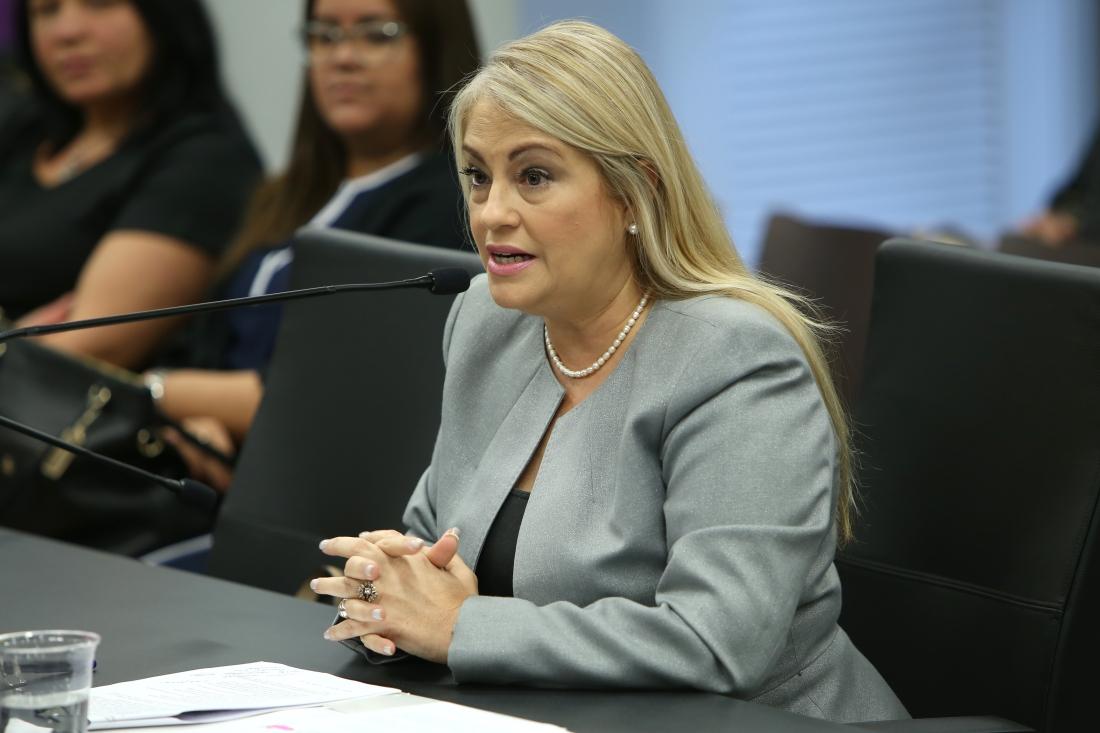 Secretaria de Justicia Wanda Vázquez Garced favorece enmiendas a Ley 54