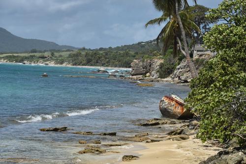 Senador del PIP radica resoluciones para exigir descontaminación de Vieques