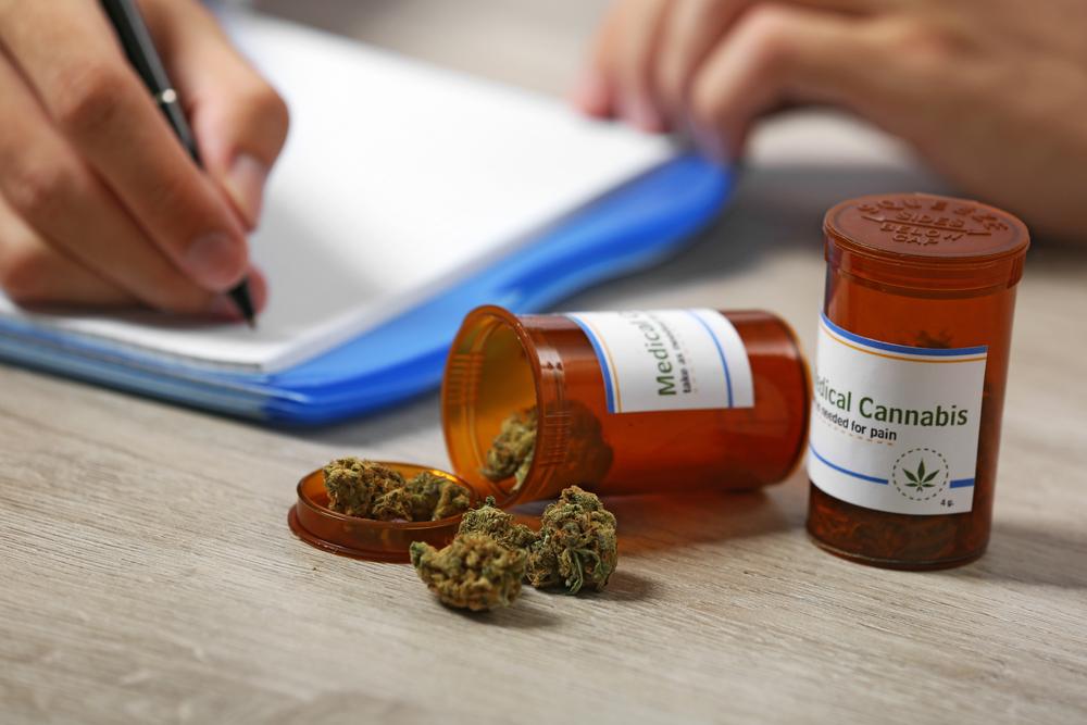 Continúa el fortalecimiento de la industria de cannabis medicinal en la isla