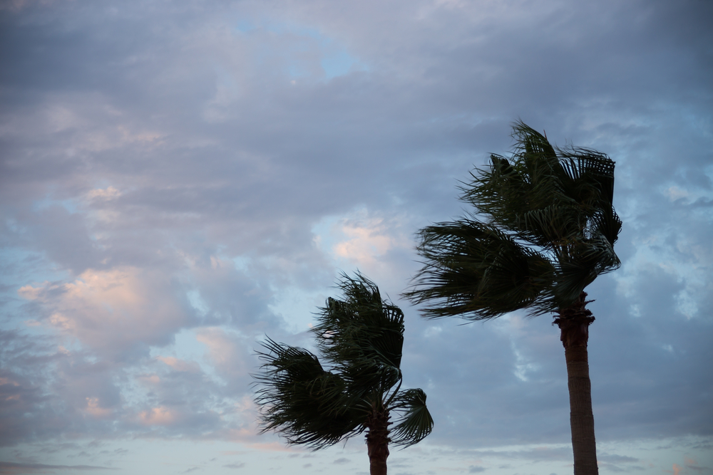Actualización de trabajos de recuperación tras paso del huracán María: 54 fatalidades, AEE reporta 37.9% de consumo