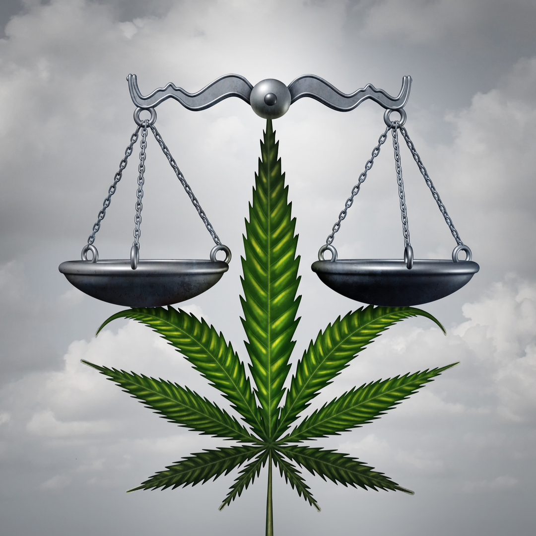 cannabis medicinal marihuana