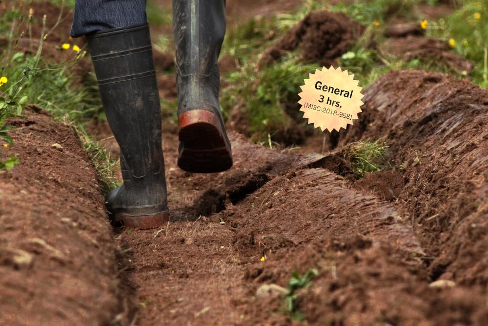 Sembrando la tierra, labrando el Derecho: El marco jurídico de las prácticas agrícolas, derecho a la alimentación y sustentabilidad alimentaria