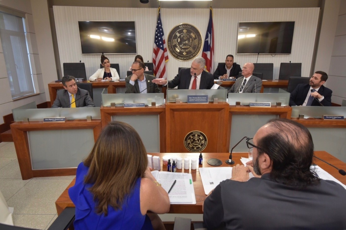 Expertos de la industria del cannabis presentan recomendaciones al Senado