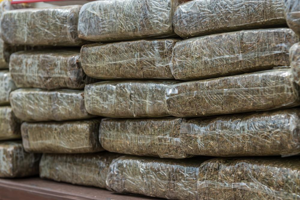 Ex agente de la Policía convicto por posesión de municiones y marihuana halladas en su propiedad