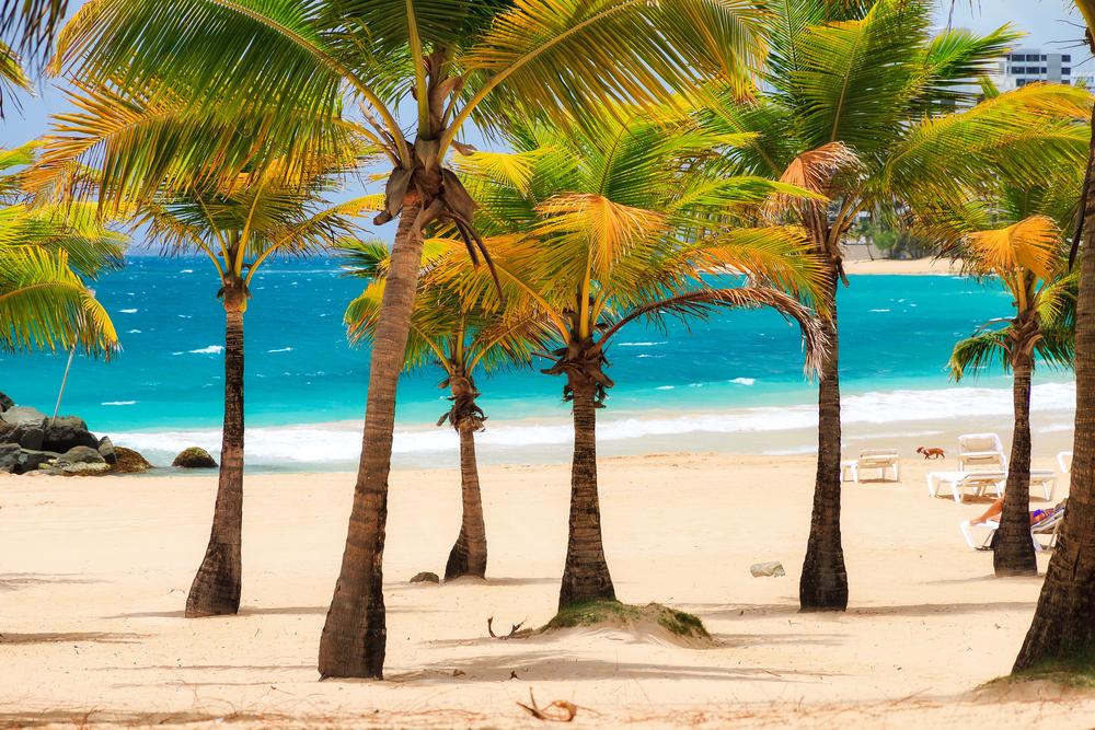 Derecho UPR discute aspectos legales de la deuda de Puerto Rico