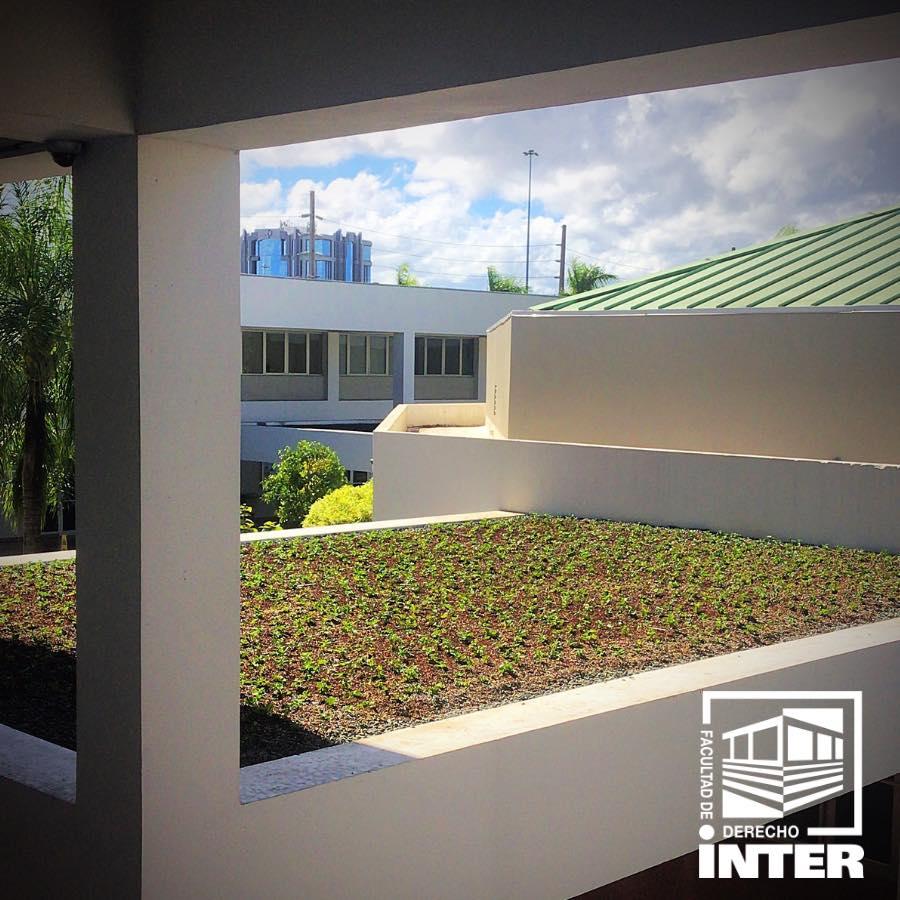 inter derecho techo verde