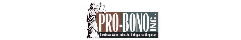 Pro Bono Inc