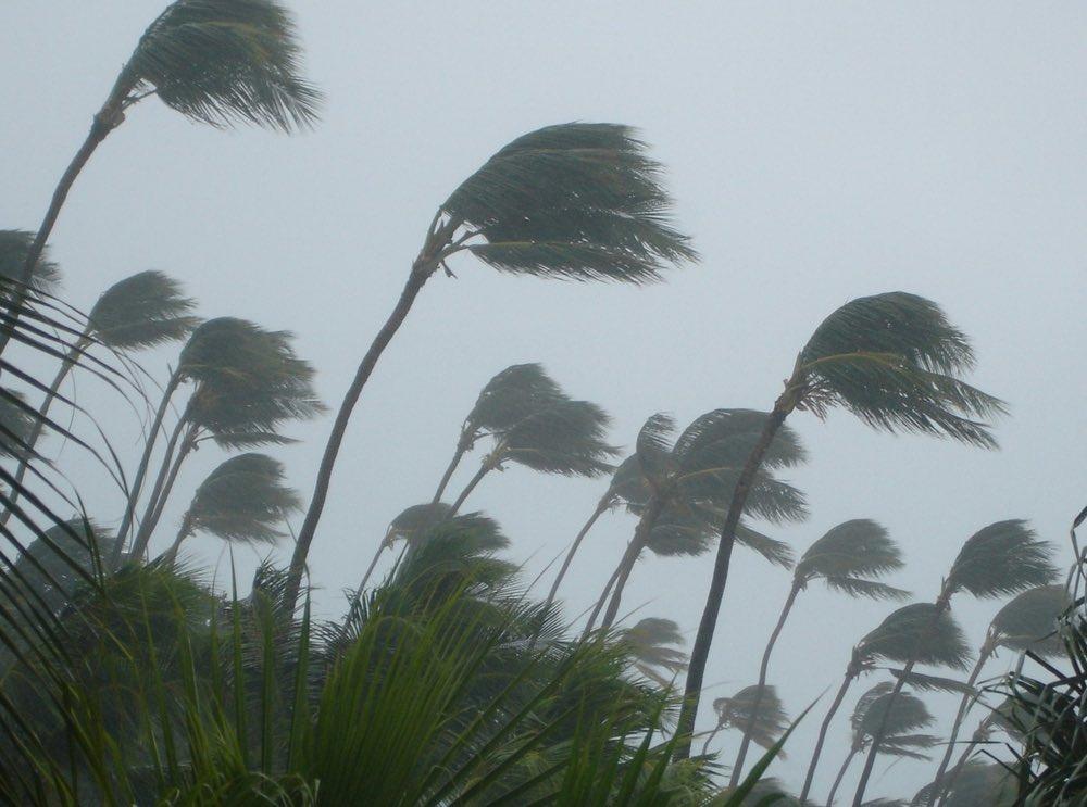 Gobernador firmó ley sobre cambio climático y anuncia lanzamiento de aplicación móvil para turismo verde