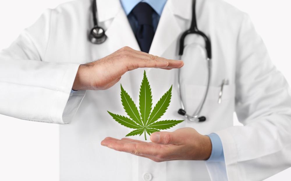 Senado aprueba que todo médico reciba educación continua de cannabis medicinal