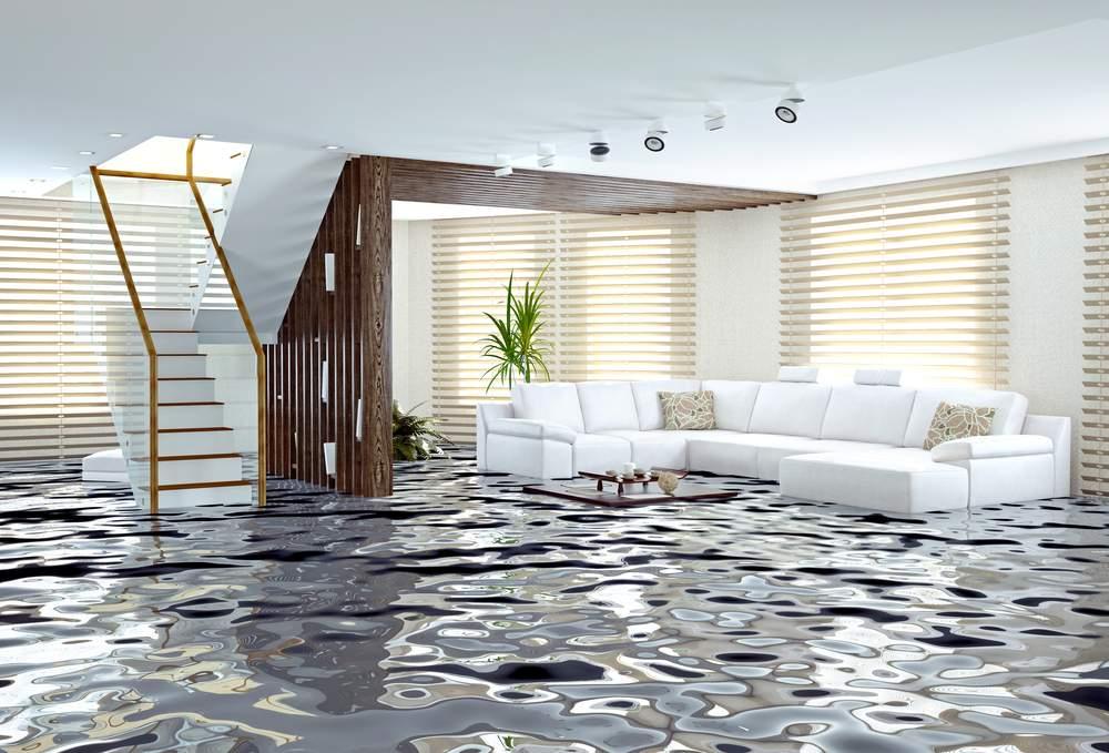 Alegan que filtraciones en apartamento propiedad de Fannie Mae causaron daños de casi un millón de dólares a apartamento de abajo
