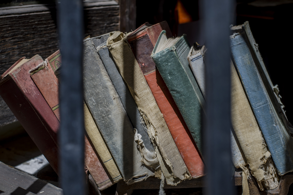 prisión; educación