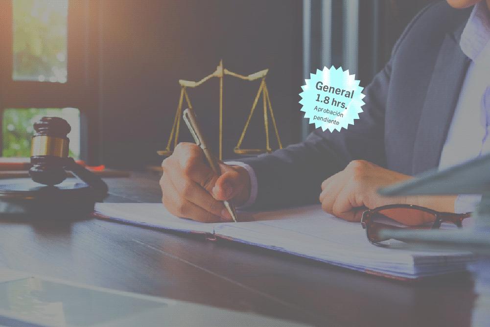 Capitulaciones, sociedad legal de gananciales y otros regímenes económicos en el nuevo derecho de familia: Código Civil 2020